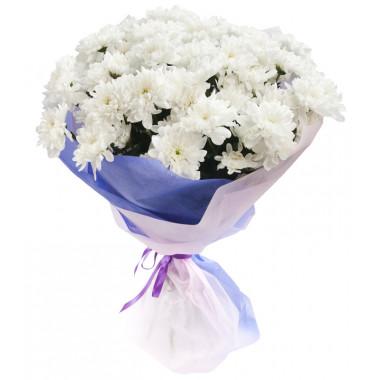 7 белых хризантем в фетре