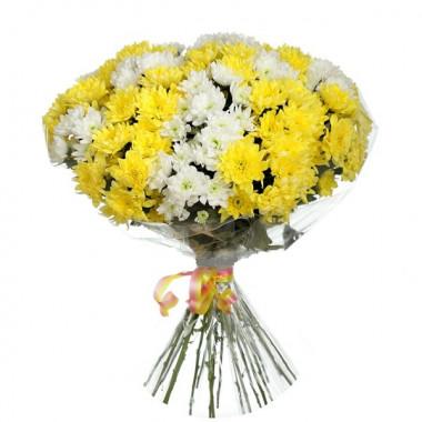 15 желтых белых хризантем